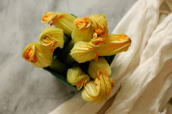 Squash Blossom Quesadillas. Looking for something to do with squash blossoms? No stuffing or frying necessary. From Blossom to Stem | Because Delicious www.blossomtostem.net